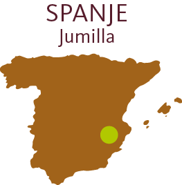 landen-2b_spanje-jumilla
